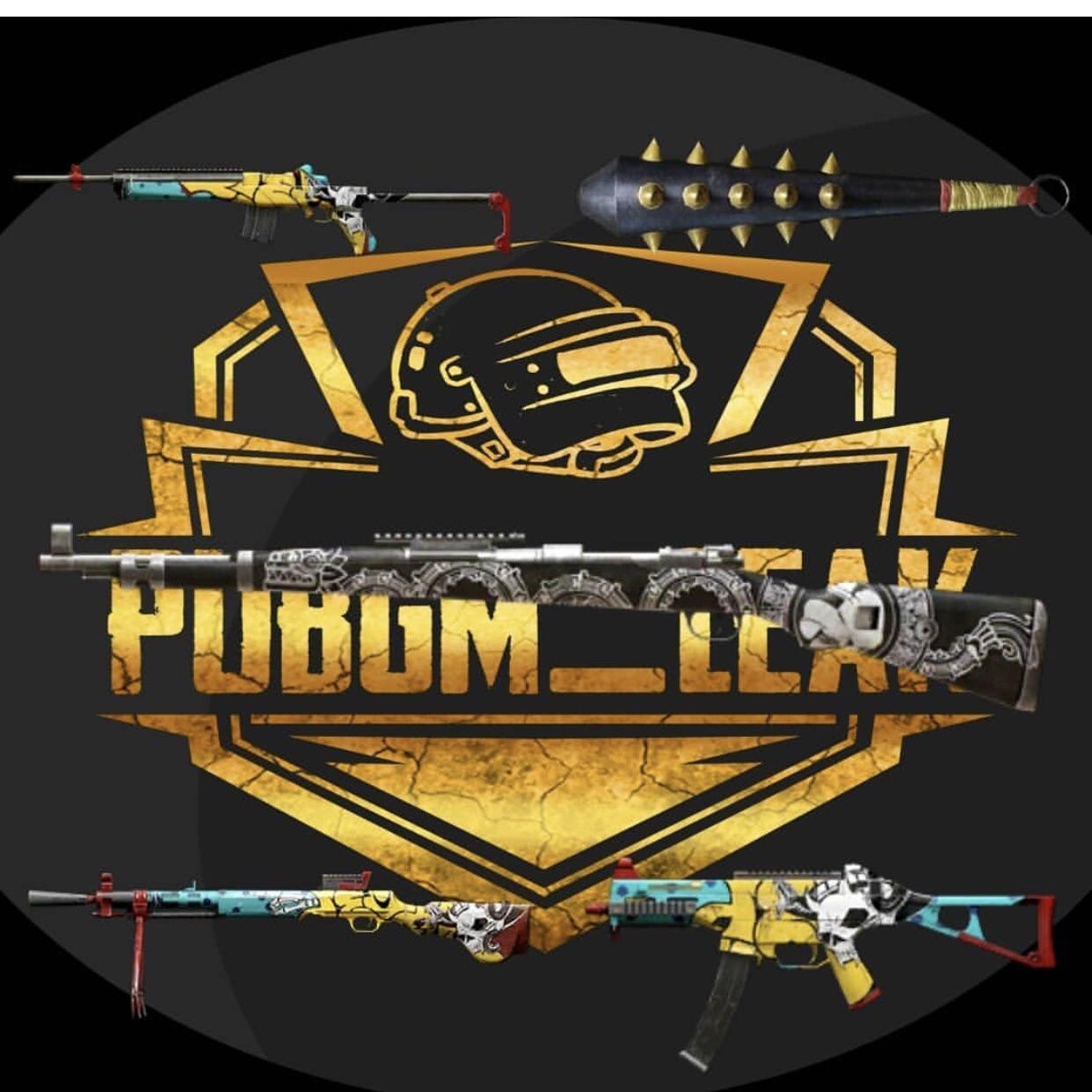PUBG Mobile Season 5 Weapon Skin