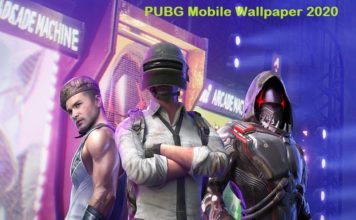 Video-Game-PUBG-HD-Wallpaper-Background-Image-1536x864